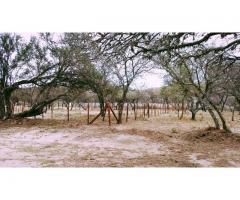 Terrenos/Lotes en Mina Clavero (Valle de Traslasierra, Córdoba)