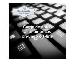 Data entry - Ingreso de datos - Carga de datos