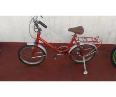 Bicicleta rodado 16 (aurorita)