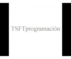 Auditoria Informática Investigación Web Programación