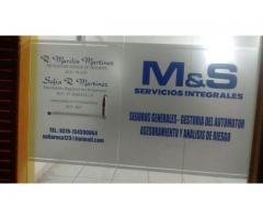 m&s servicios integrales