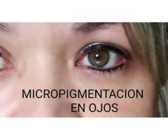 CEJAS PERFECTAS, ARTISTA EN MICROPIGMENTACION