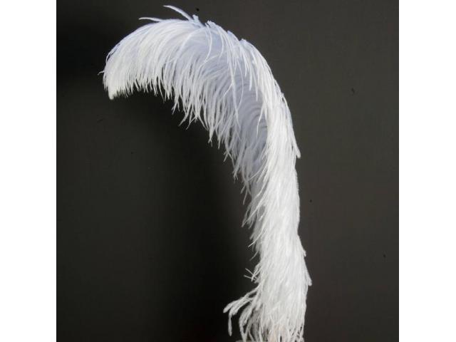 Plumas decorativas naturales de avestruz - 1/2