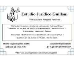 Estudio Juridico Penalista