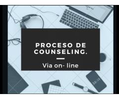 Consultora Psicologica- Counselor Giovanna de Bardeci