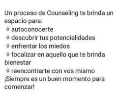 Counselor consultora psicologica