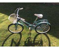 Bicicleta Evolution Nena Rodado 20