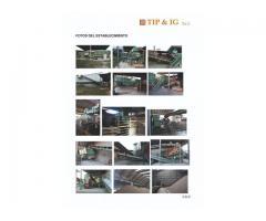 vendo fabrica de ladrillos completa- producción de 250-300tn/día