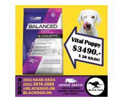 (((OFERTA))) VitalCan Balanced PUPPY de 20 kg. + ENVÍO = $3490!