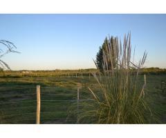 Vendo Lote en Mendoza- Vista a montaña- 2000 m2- $350.000