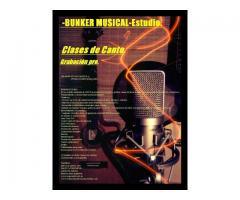 clases de canto zona sur banfied