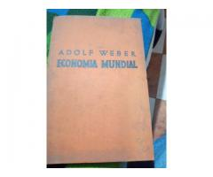libro de economia