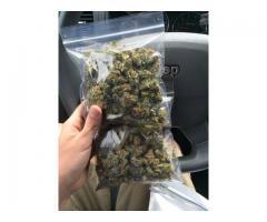 Marihuana medicinal y aceite de cannabis en venta