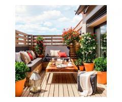 Envio de plantas a domicilio. Plantas de diseño interior y exterior. Jardineria - Imagen 3/4