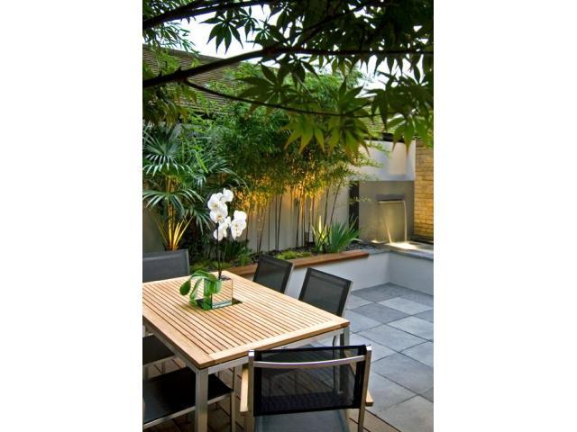 VIvero online. Plantas de diseño interior y exterior. Envios. Asesoramiento - 3/3