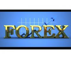 Trading de forex solo sesion americana