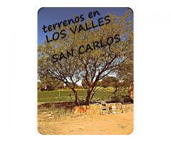 Vendo terrenos en San Carlos